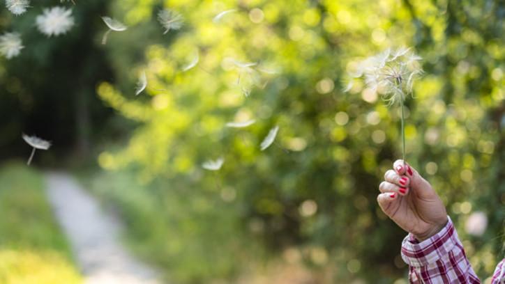 alergia-de-personas-mayores-ancianos-en-otoño